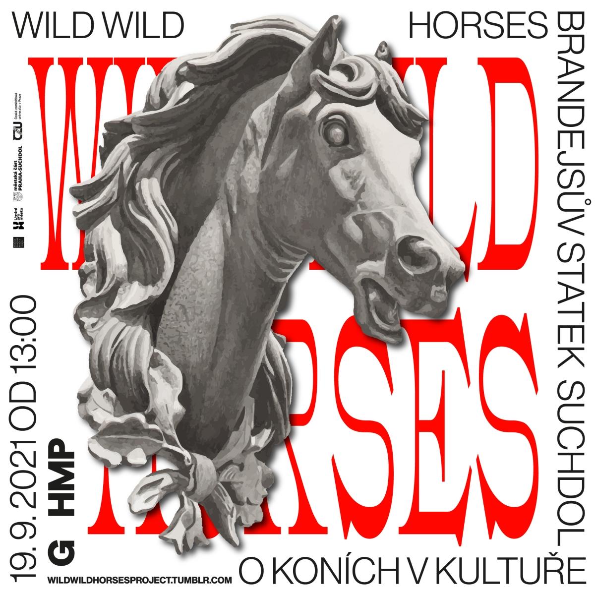 TriangulUM 2021 - Vladimír Turner: Wild Wild Horses
